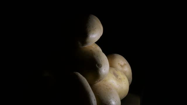 mountain of natural potatoes gyrating. solanum tuberosum - group of people filmów i materiałów b-roll