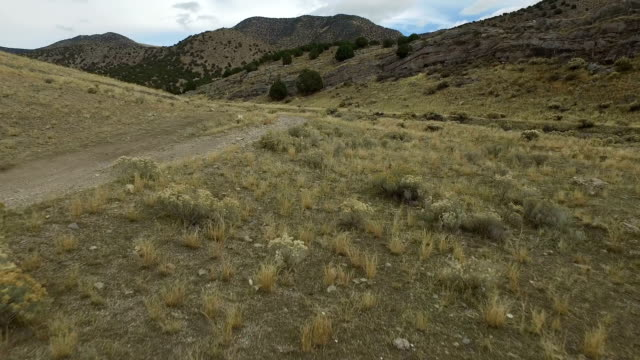 vidéos et rushes de col de montagne - randonnée équestre