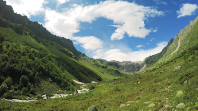 Mountain range of Caucasus. Beautiful valley meadow Mountain meadow with blooming flowers. Summer snowcapped mountain stock videos & royalty-free footage