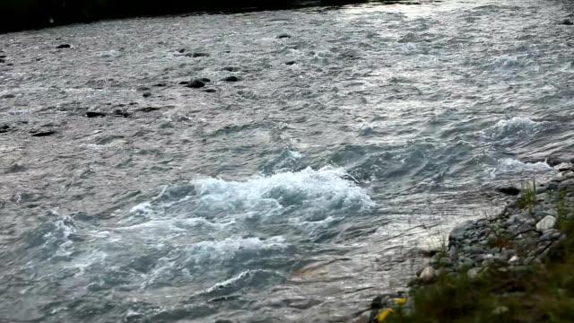 山川。高速ストリーム水。ロシアのアルタイ - アルタイ自然保護区点の映像素材/bロール