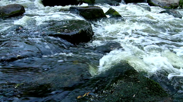 mountain river rapids video