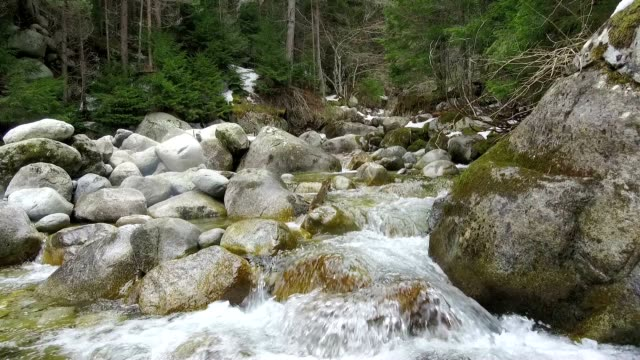 mountain river stones fast mountain stream among the stones  spring a thaw in the forest rapids river stock videos & royalty-free footage