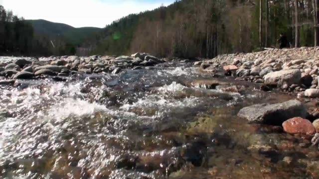 temnik 川はバイカル州自然生物圏保護区の国境にあります。 - 自然旅行点の映像素材/bロール