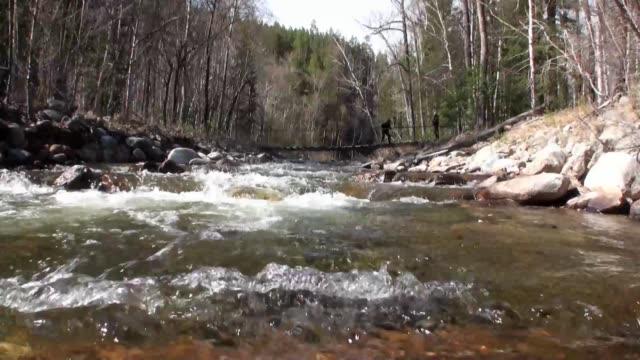 mountain river temnik at border of baikal state nature biosphere reserve. - ekoturystyka filmów i materiałów b-roll