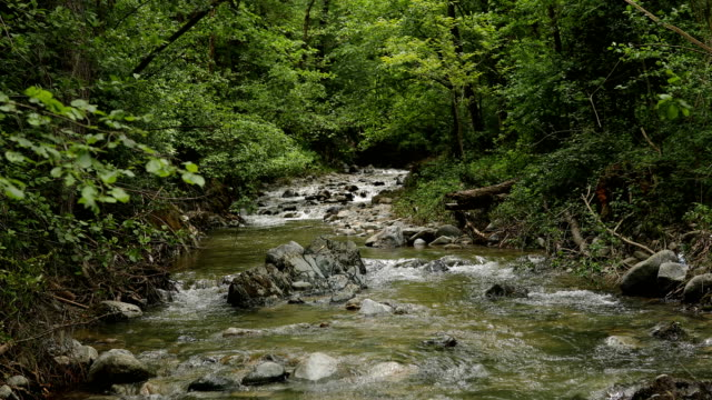 Mountain river Mountain river running water stock videos & royalty-free footage