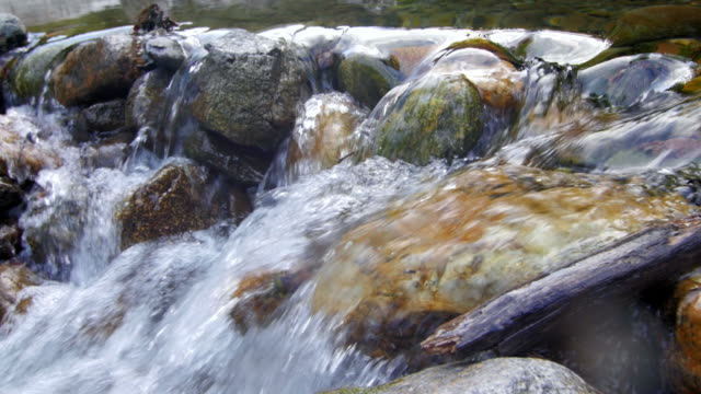 vídeos de stock e filmes b-roll de fluxo de água do rio de montanha - enjoying wealthy life