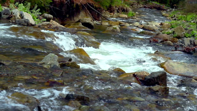 Mountain river with waterfalls, rapids, and foam flowing between rocky river banks. Stony riverbed. Shot in Carpathian Mountains in spring video