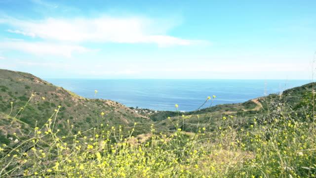 Mountain side ocean view video