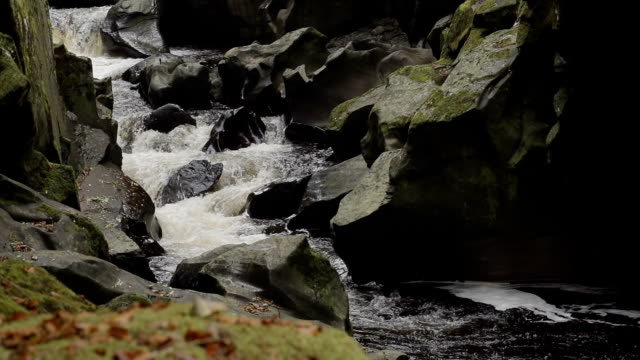 Mountain Stream Deep In The Wilderness Slow Motion video