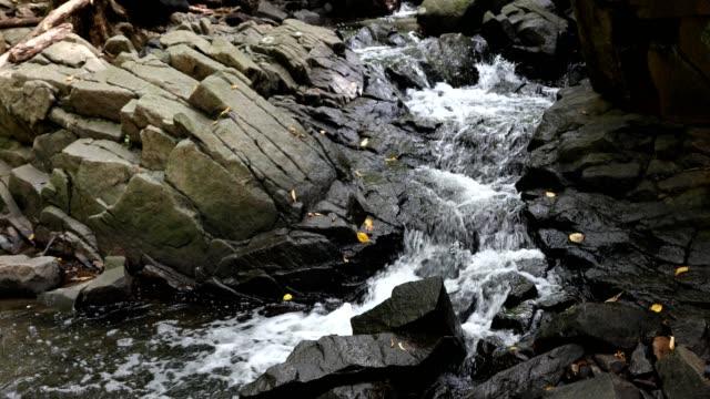 mountain stream in autumn - ручей стоковые видео и кадры b-roll