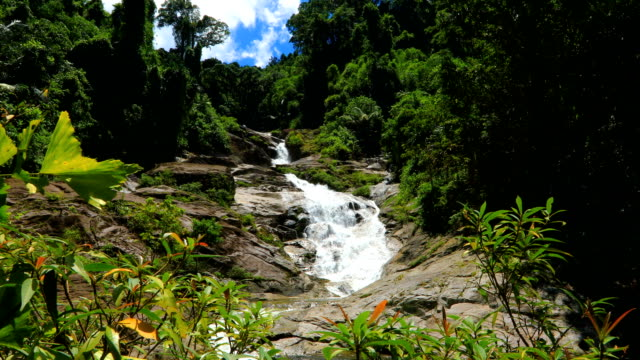 Mountain stream in the forest, 4K. Shot of The stream flows from the waterfall. nakhon si thammarat stock videos & royalty-free footage