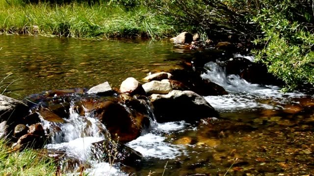 Mountain Stream video