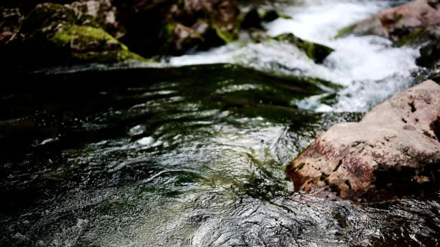 mountain stream - akan su stok videoları ve detay görüntü çekimi