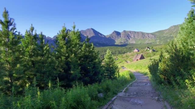 küçük bir köye giden dağ yolu - zakopane stok videoları ve detay görüntü çekimi