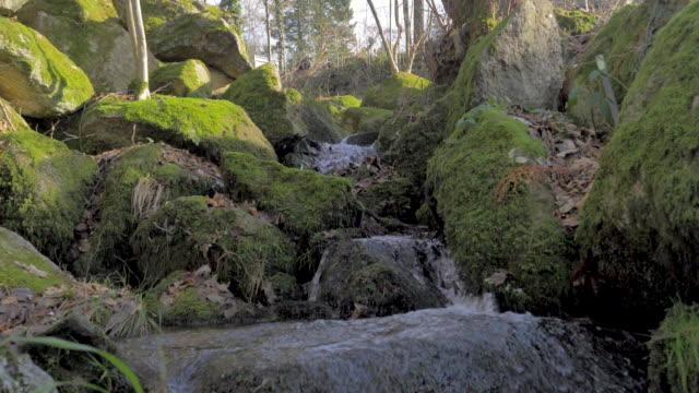 mountain water waterfall among green moss rocks in slow motion - masso video stock e b–roll