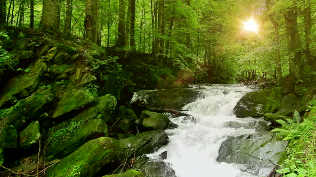 Mountain Waterfall in HD video
