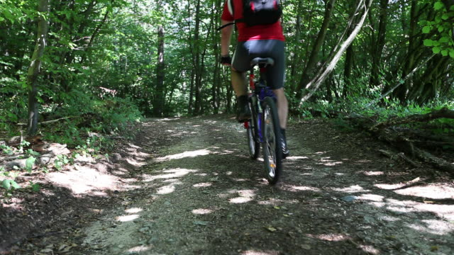HD: Mountainbiking in forest video