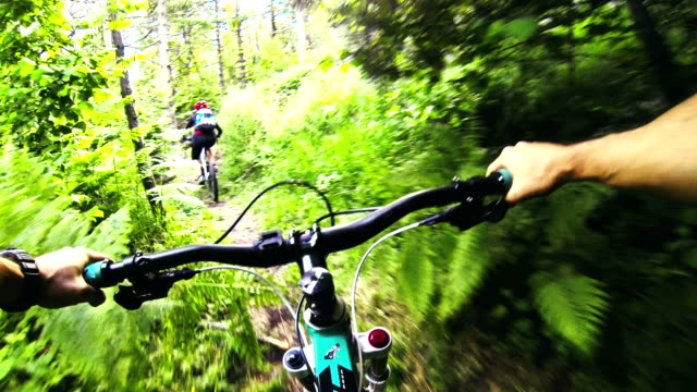 Mountainbiking in the forest video