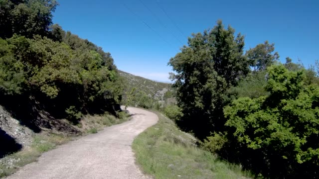 Mountainous country road between trees in northern Greece