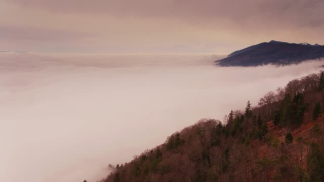 Mountainous Forest in Wintry Fog - Aerial View video
