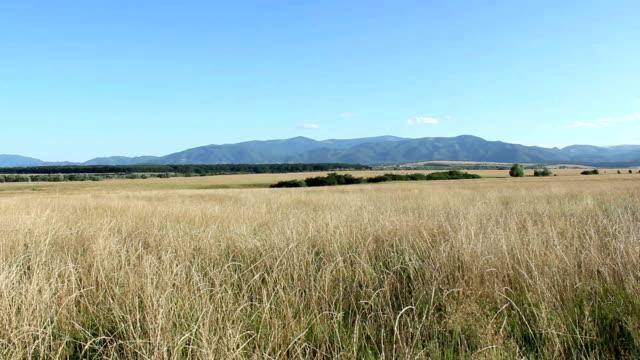 Mountains Profile at Horizon video
