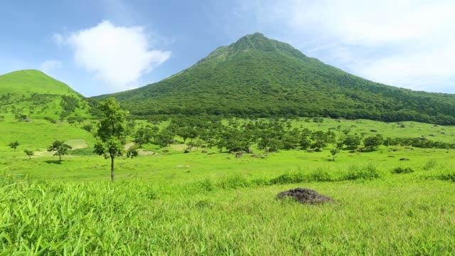 Mountain-Yufu of fresh green video