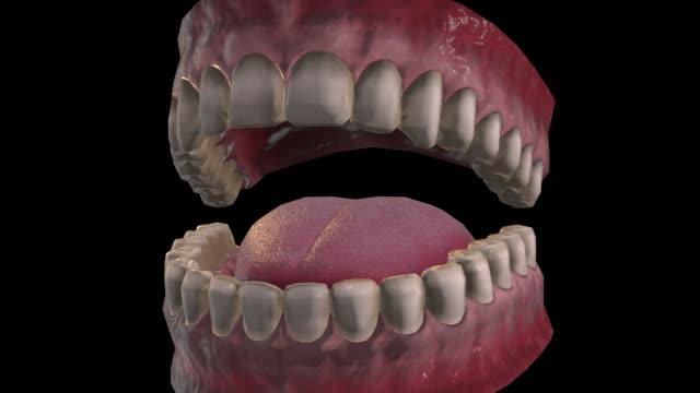 vídeos y material grabado en eventos de stock de boca-alejar - ortodoncista
