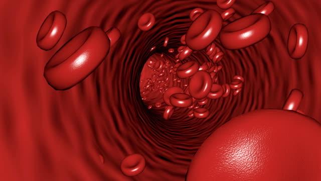 förflyttning inuti blodkärlet blodplättar kan slinga sömlös 4k - människoblod bildbanksvideor och videomaterial från bakom kulisserna