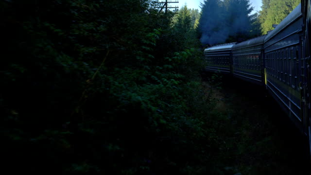 rörligheten för tåg på fjällskog - karpaterna tåg bildbanksvideor och videomaterial från bakom kulisserna