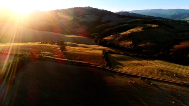 hareketli hava atış hasat alanları, ağaçlar ve tepeler. büyük ölçekli görünümü güzel renkler ile batan güneşin yaktı. - toskana stok videoları ve detay görüntü çekimi
