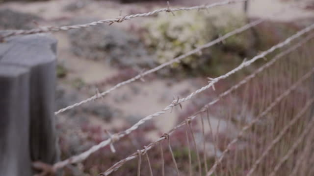 moving along a rusty barbed wire fence - imperfection stock videos & royalty-free footage