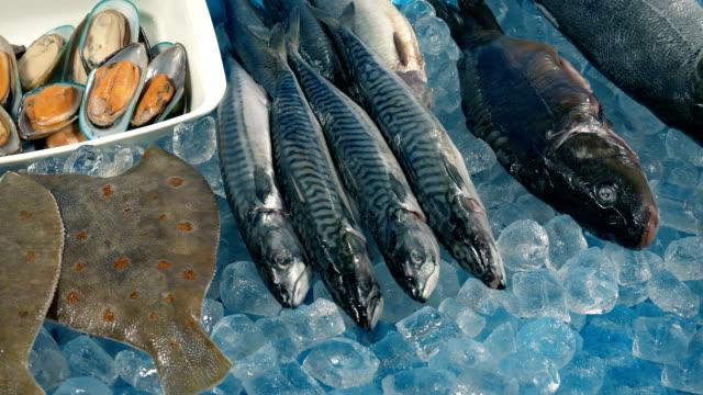 bewegen entlang fisch-display auf dem markt - fang stock-videos und b-roll-filmmaterial