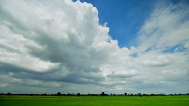 時間の経過の農場で雲を移動 - 水田点の映像素材/bロール