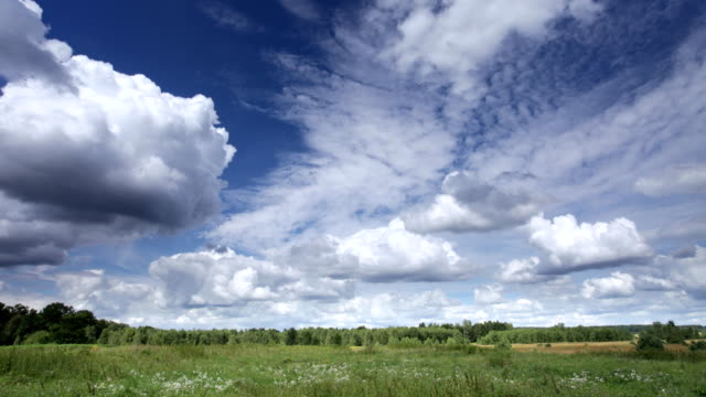 Moving clouds and meadow Timelapse video