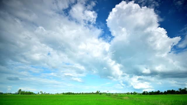 移動雲のタイムラプス - 水田点の映像素材/bロール