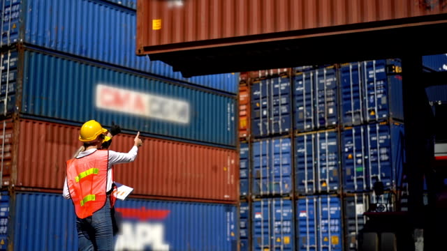 Moving Container By A Forklift Truck In Shipping Port Slow Motion Shot Of Male And Female Engineers Moving Container By A Forklift Truck In Shipping Port cargo container stock videos & royalty-free footage