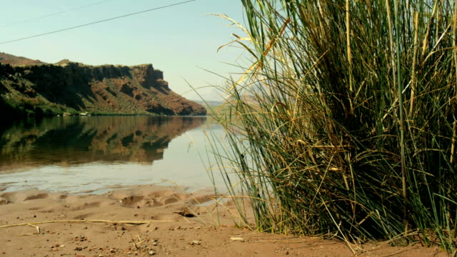 moving dolly slider beach Colorado River at Lee's Ferry Grand Canyon Arizona 4K video