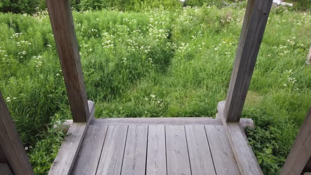 Moving down on wooden steps. view from porch to the field