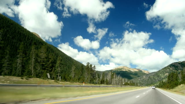 pov moving driving down mountain highway with pine tree spring summer day i-70 - conifera video stock e b–roll