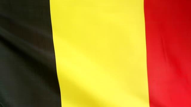 Moving flag of Belgium video