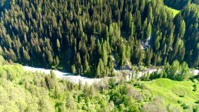 Moving forward to woods forest and mountain valley with sun flare in summer day.Europe Italy Alps outdoor green nature scape mountains wild aerial. drone flight in Alps. 4K