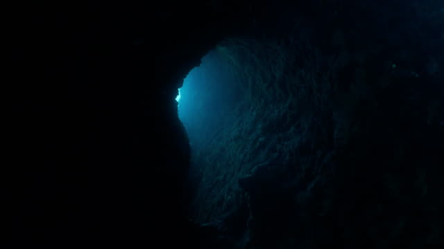 Moving inside dark underwater tunnel Camera moves inside tunnel, towards incoming sunlight at exit/entrance. cave stock videos & royalty-free footage