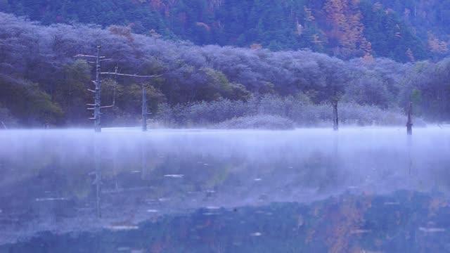 秋の森の美しい池上霧に移動 - 冬点の映像素材/bロール