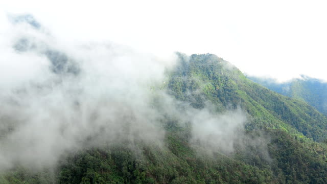 Moving Mist over  Mountains in rainy seasons video