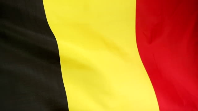 Moving national flag of Belgium video