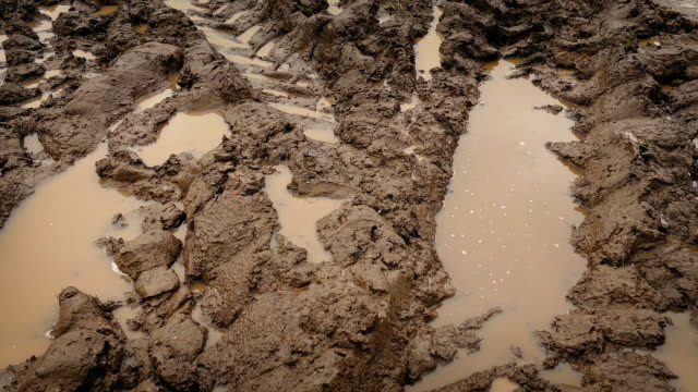 Moving Over Big Tire Tracks In The Mud Tracking shot moving past thick mud and puddles with tire tracks mud stock videos & royalty-free footage
