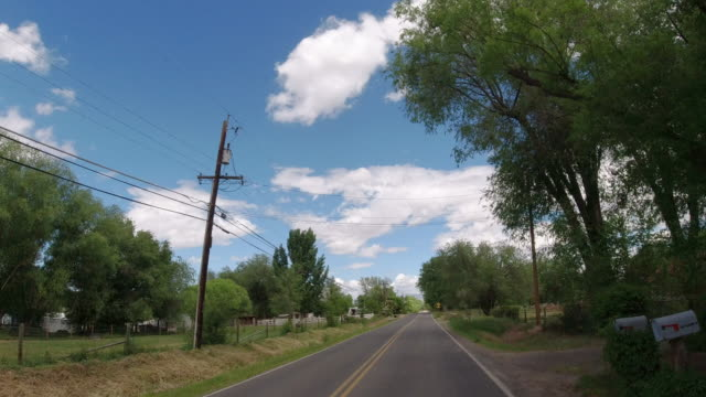 Moving Process Plate of a Vehicle Driving along a Treelined Road in a Rural Residential District of a Town under a Partly Cloudy Sky