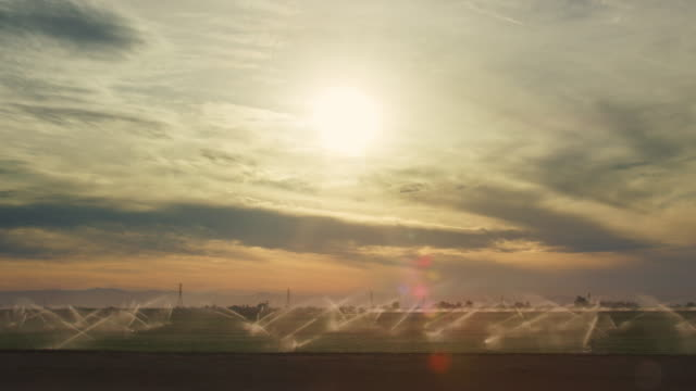 Moving Shot of Sprinklers Watering a Large, Green Field underneath a Dramatic, Hazy, Partly Cloudy Sky