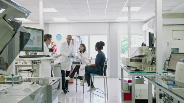 Moving Video of Pathology Lab Coworkers Gathered for Informal Meeting Slow motion video of Hispanic male and female pathologists meeting with African technician in Buenos Aires clinical analysis laboratory with focus on background. laboratory stock videos & royalty-free footage