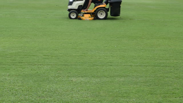 Mowing grass in a football stadium video
